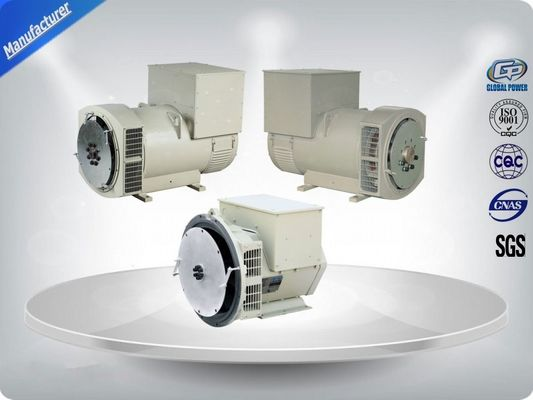 China Three Phase Brushless AC Generator distributor